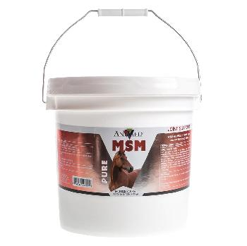 AniMed Pure MSM supplement for horses, 10 pounds