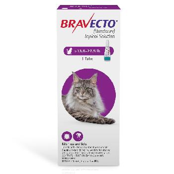 RX Bravecto Topical for Large Cats 13.8-27.5 lbs 1 dose